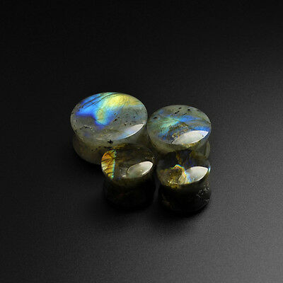 Labradorite Convex Stone Plugs | Grade B Flash | Stretcher |  8mm - 30mm