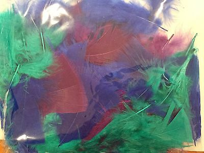 Feathers Multicoloured Craft Feathers 10 Gram Bag