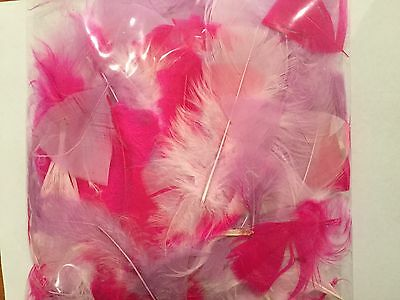Feathers Pink Craft Feathers 10 Gram Bag