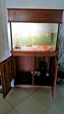 Large Fish Tank and cabinet (includes pump filter & light)