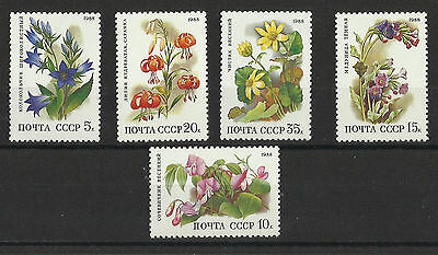 Deciduous Forest Flowers Set - Russia  - MNH - 1988