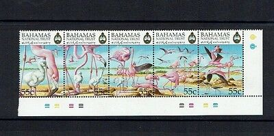 Bahamas: 1999, 40th Anniversary of National Trust, (1st series)  Birds, MNH set