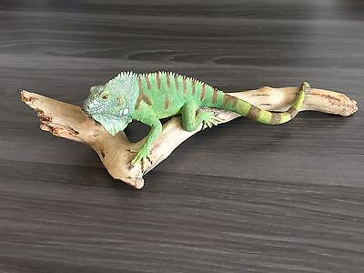 "New! Iguana Statue by K. Sherwin 2002 * Lifelike * 13"" Long"