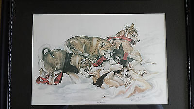"Sled Dog Print ""In Harness"" s/n Ltd Ed print by Darlene Wilson"