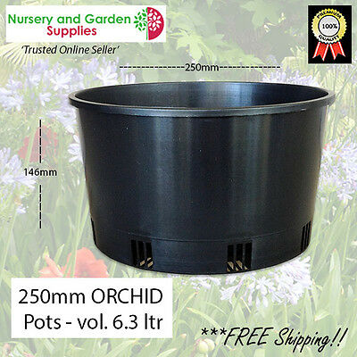 250mm Orchid Squat Pot - (Height-146mm) HEAVY DUTY - various pack sizes