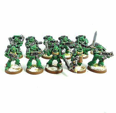 Warhammer 40K Army Space Marine Salamander Tactical Squad Painted