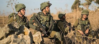 IDF zahal marom dolphin israel army new standard type cover with Z