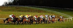 The BetEmperor Horse Racing System