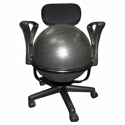 High Back Exercise Ball Chair Symple Stuff FREE SHIPPING (BRAND NEW)