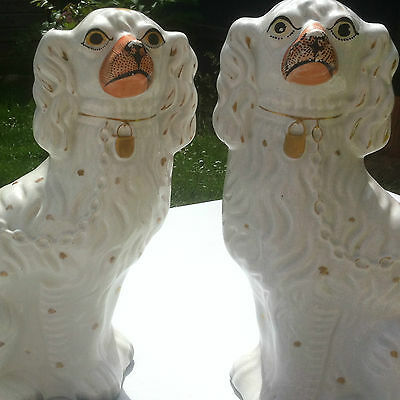 Victorian Antique Staffordshire Dogs Seated King Charles Spaniels