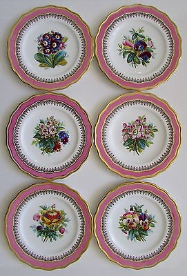 "Felspar Style Old English 9"" Pink Porcelain Flower Plates Set of 6"