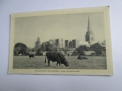 Postcard of Chichester Cathedral, from the South-West (Unposted Tuck's)