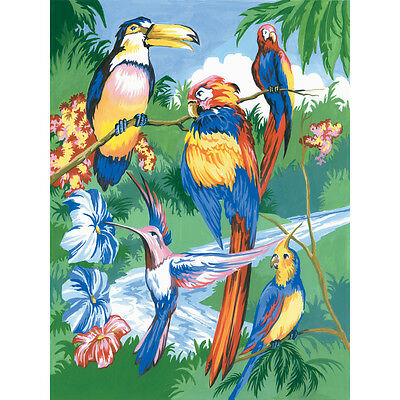 """Junior Small Paint By Number Kit 8.75""""X11.75"""" Tropical Birds PJS-15"""