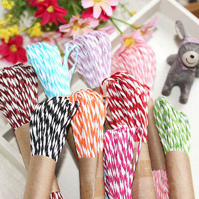 Twisted Paper Twine 10M DIY Craft String wedding party colour wrap ribbon SR