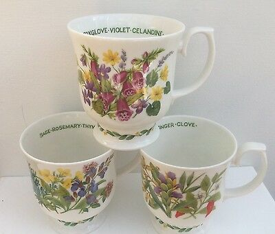 Set 3 Roy Kirkham Herbs N Spices Footed Mugs