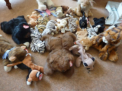 TY Beanie babies and plush job lot