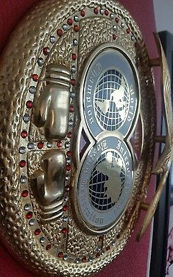 Mike Tyson signed IBF BOXING Belt with COA Real Deal