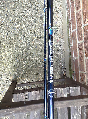 Century G5 Supa sport 13ft sea / beach fishing rod