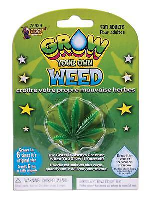 FANCY DRESS Grow your Own Weed