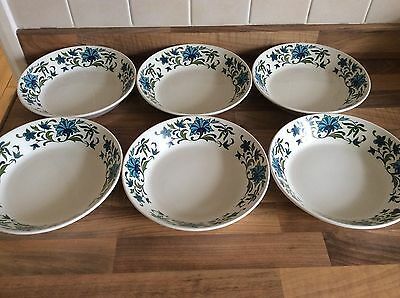 6 x Midwinter Spanish Garden Soup bowls Cereal Dishes Jessie Tate