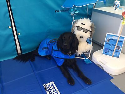 Easidri / Chilli Paws Dog Cooling Coat, Towel & Cooling Mat,  ALL Sizes Free P&P