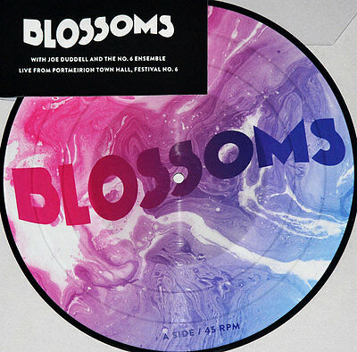 "LP BLOSSOMS ""UNPLUGGED AT FESTIVAL NO.6 -10`` RSD 2017-"". New"