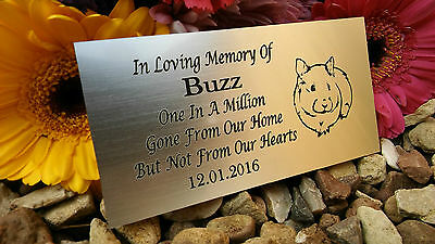 Personalised Engraved Pet Memorial Plaque Hamster Silver 10X5Cm (A20)