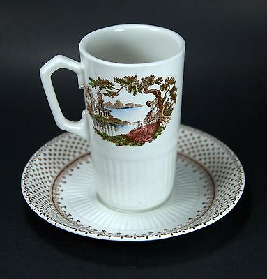 Vintage Ironstone W. Adams & Sons England Antoinette Pattern Cup and Saucer Set