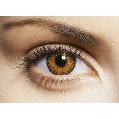 lentilles de couleur honey miel 1 an - contact lenses