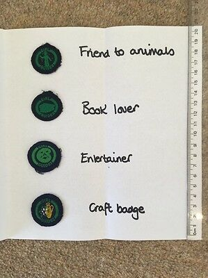 Girl Guide Badges