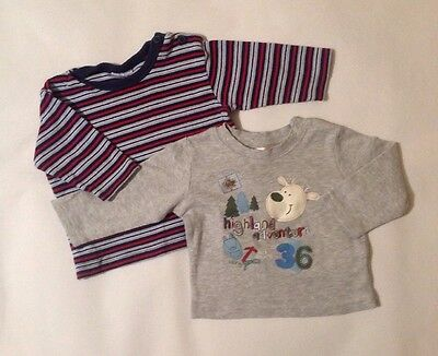 Baby Boys 3-6 Months Cherokee Early Days X2 Long Sleeve T-shirts Animal Striped