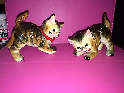 Vintage Pair Of Playful Kittens Tiger Stripe Tabby With Green Eyes
