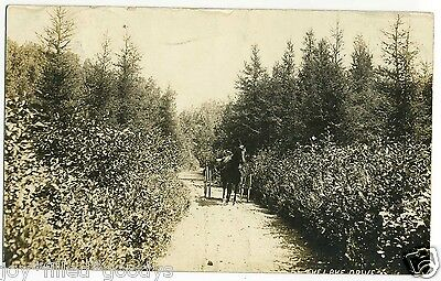 LAKE DRIVE DICKINSON CENTER NEW YORK REAL PHOTO POSTCARD 1900s