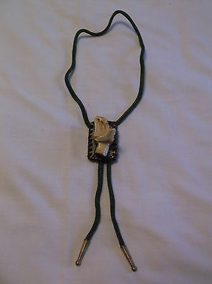 REAL  RATTLESNAKE HEAD BOLO TIE, Taxidermy. Hand Made