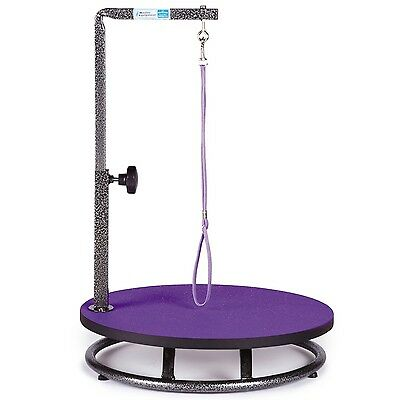 Master Equipment Small Pet Grooming Table Purple