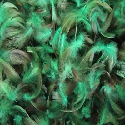 Apple Green Mallard Duck Feather Plumage Pack of 10 grams