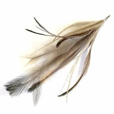 New Emu Feather Pincher - Natural - Wholesale Feathers & Craft Supplies
