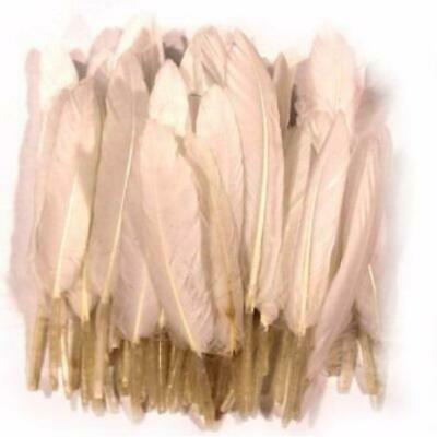 White Tiny Goose Pointers Pack of 10 gram