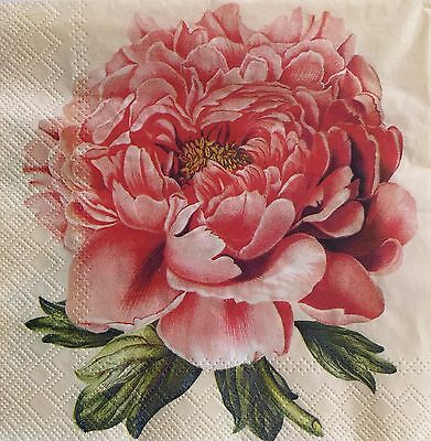 20 paper Napkin Decoupage Crafts Collection Shabby Flower Peony #2541
