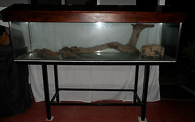 6 Ft Fish Tank Or  Reptile Tank