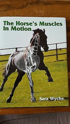 The Horse's Muscles in Motion by Sara Wyche (Hardback, 2002)