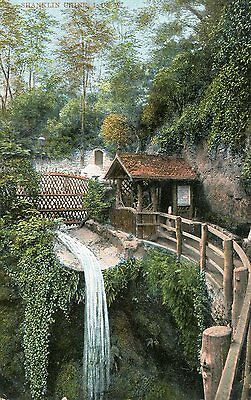 1907 postcard Shanklin Chine Isle of Wight