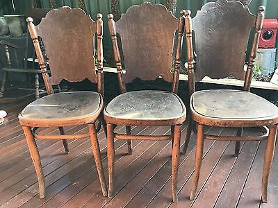 3 Bentwood Jacob and Josef Kohn Wien Chairs