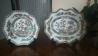 Coalport,Art Deco,Indian tree ,fluted dishes ,hand painted