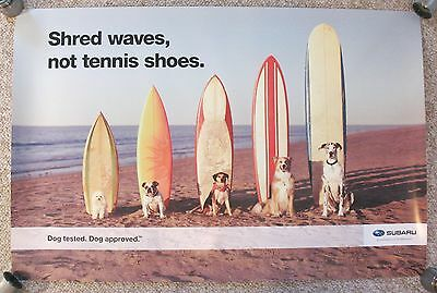 "Subaru Lg POSTER Dogs with Surfboards on Beach 38""x25"" Dog Surf Waves"