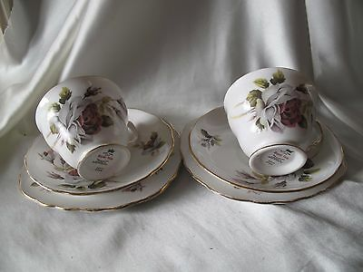 2 x VINTAGE ROYAL VALE TRIOS WITH ROSES DECORATION PATTERN 8220