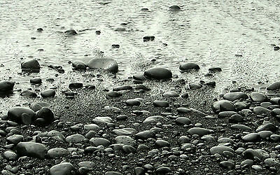 Picture Image Slippery River Rocks