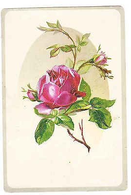 Victorian Trade Card----Lion Coffee---Pink Roses