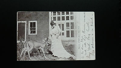 Postcard 1908 Nance O'Neill & Her Pet Fawns