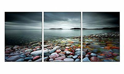 3 Panels Wall Art Framed Canvas Home Decor Painting Prints Abstract Modern Beach